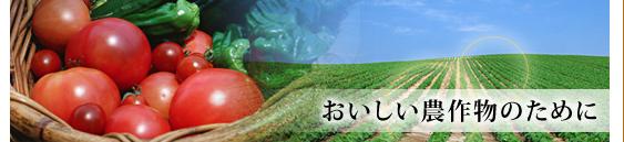 有機肥料 販売 肥料製造 家庭菜園 土壌改良剤 岐阜県美濃市|アースター株式会社